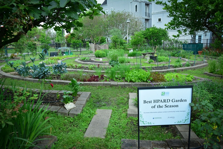 The Nellie Keys Garden is one of several urban gardens providing more than a bounty of produce for those who partake in the outdoor craft of gardening.