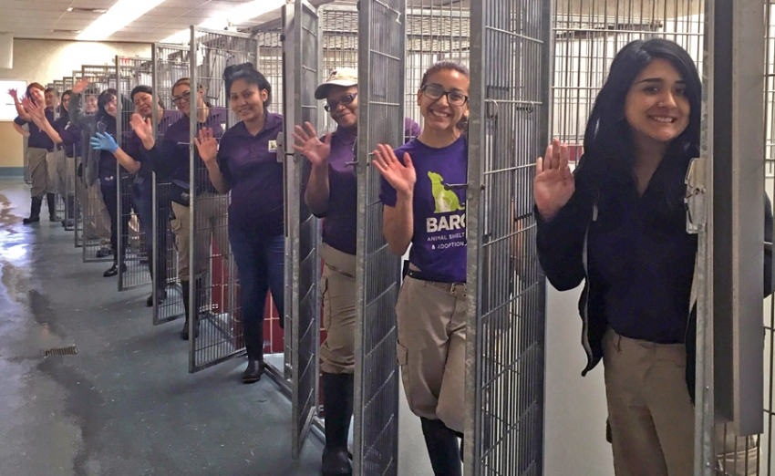 BARC employees celebrate empty kennels after adopting 400 animals in one weekend.
