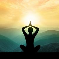 Beginner Yoga for Charity